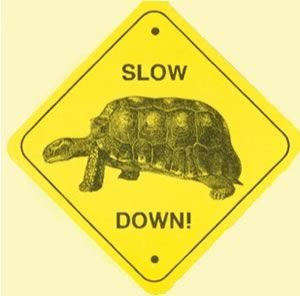"""Slow Down, You Move Too Fast….."""